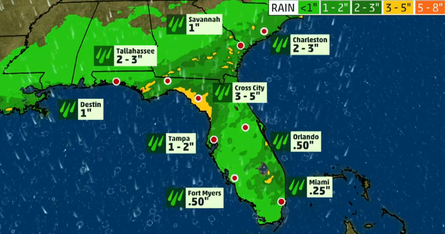 Rainfall predictions across the state of Florida.